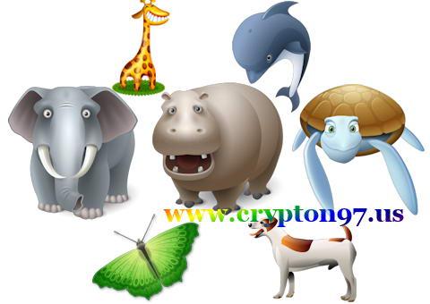 burung, panda, kelinci, zebra, kuda nil, kupu kupu, kuda, kura kura, belalang