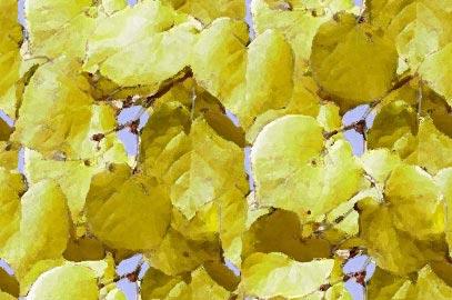Background dengan motif dedaunan yang sudah mengering