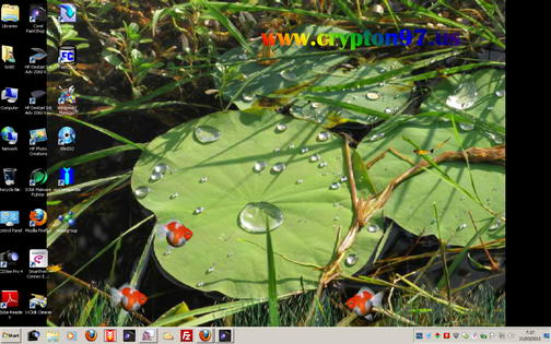 Lotus Pond Animated Wallpaper – Screen saver animasi bergerak rintik